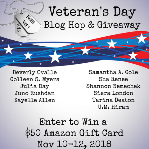 RomVets Veteran's Day blog hop