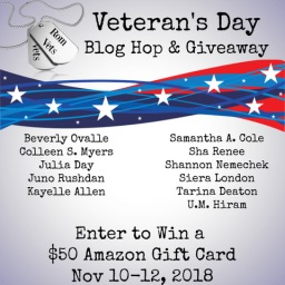 Veteran's Day Giveaway