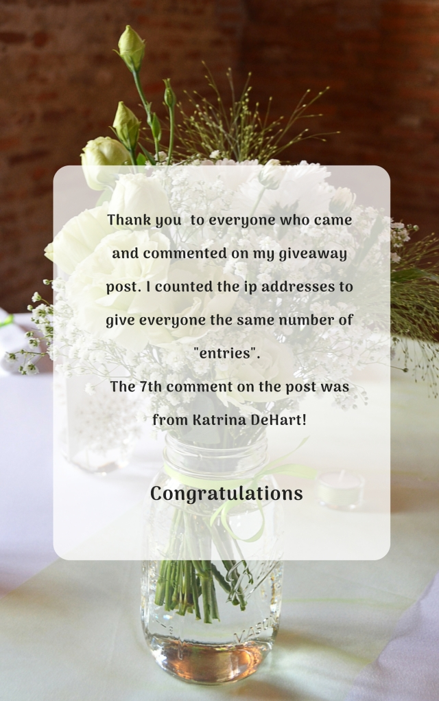 Thank you to everyverone who came and commented on my giveaway post.