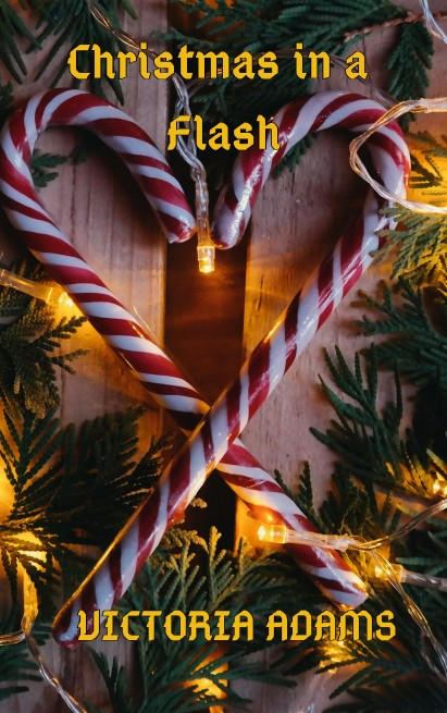 __Christmas in a flash